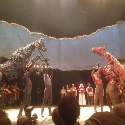 War Horse 2014-2015
