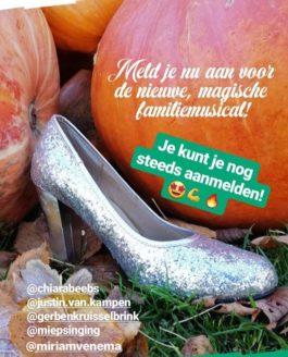 Openluchttheater Hertme – Cinderella Audities!